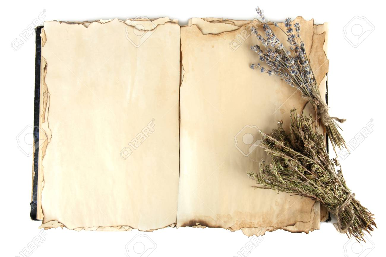 Open old book and lavander isolated on white Stock Photo - 19770222