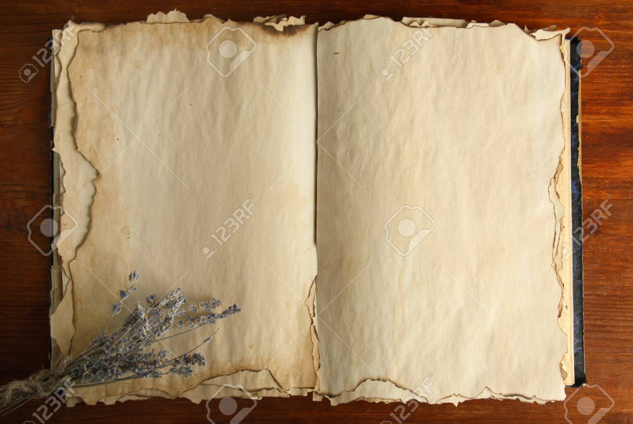 Open old book and lavander  on wooden background Stock Photo - 19770318