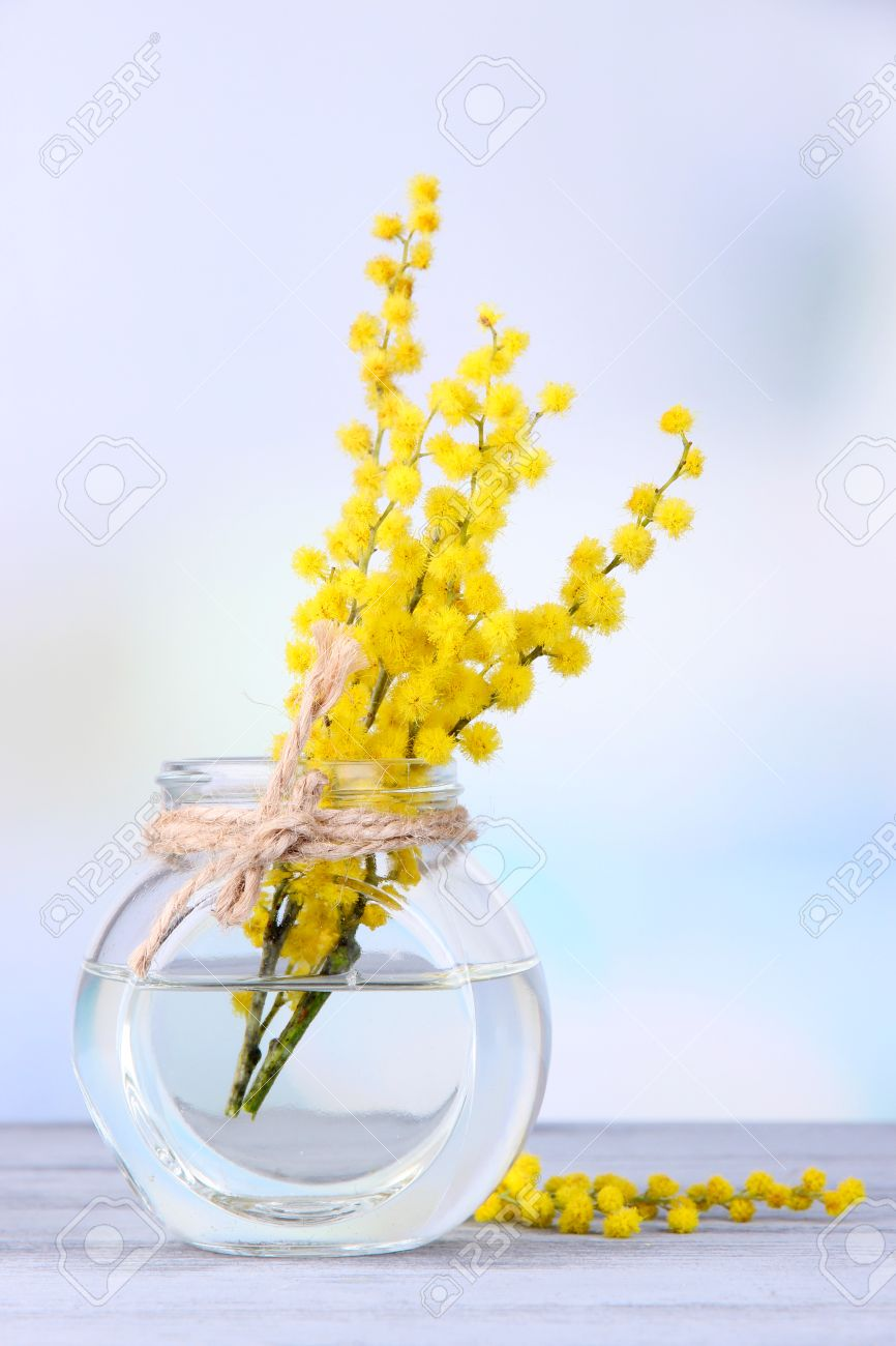 Twigs of mimosa flowers in vase on wooden table stock photo twigs of mimosa flowers in vase on wooden table stock photo 27005069 reviewsmspy