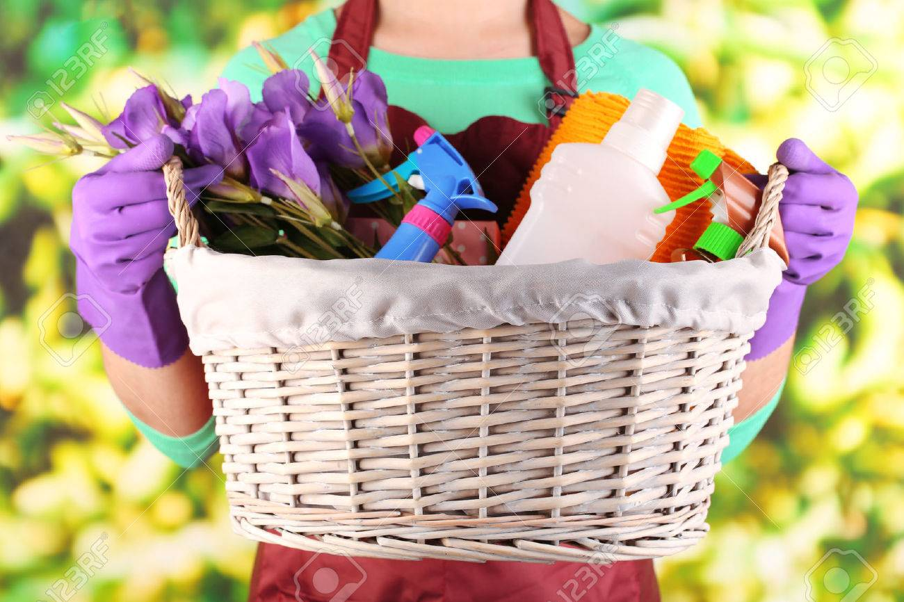 Housewife holding basket with cleaning equipment on bright background. Conceptual photo of spring cleaning. Stock Photo - 27010586