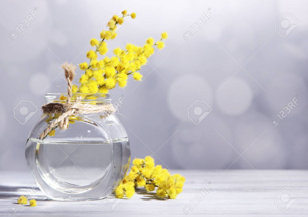 Twigs of mimosa flowers in vase on wooden table stock photo twigs of mimosa flowers in vase on wooden table stock photo 27180934 reviewsmspy
