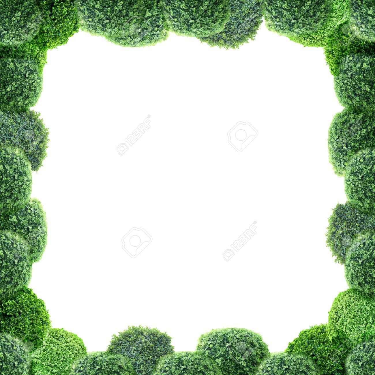 Lujoso Marco Verde Galería - Ideas de Arte Enmarcado - silvrlight.info