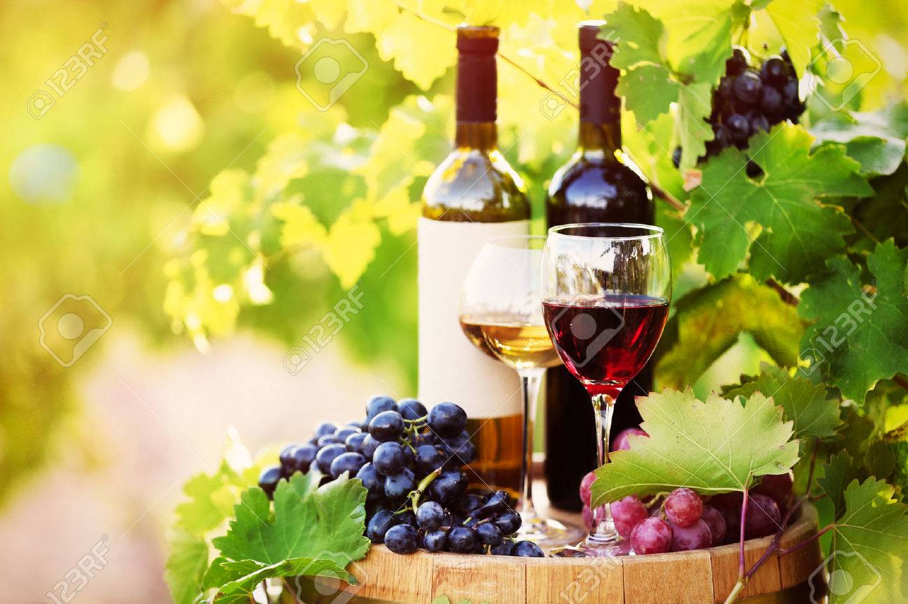Tasty wine on wooden barrel on grape plantation background - 36360025