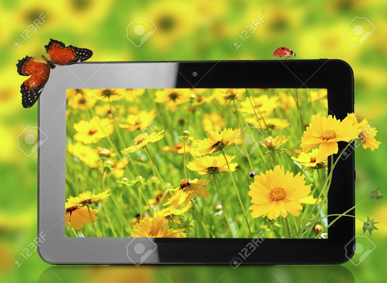 Tablet With Nature Wallpaper On Screens On Natural Background Stock