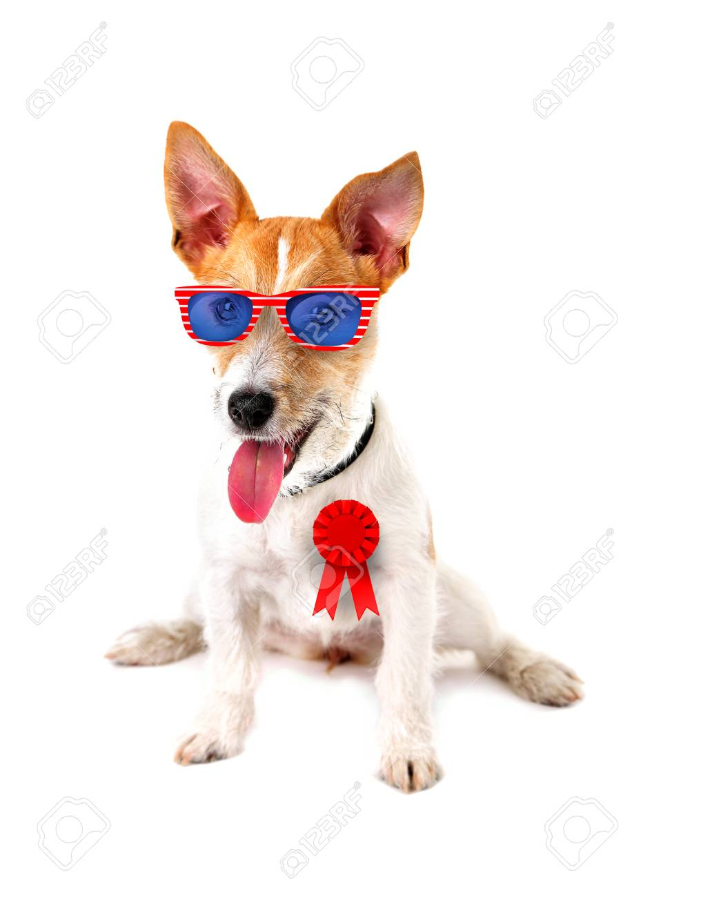 Good Ribbon Bow Adorable Dog - 79516828-cute-dog-with-sunglasses-and-award-ribbon-on-white-background-usa-holiday-concept-  Graphic_216745  .jpg