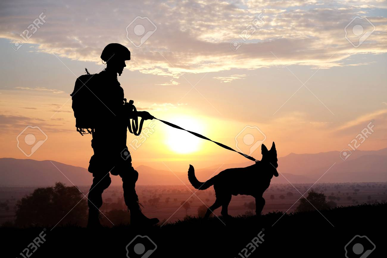 Silhouettes of soldier and dog on sunset background. Military service concept. - 86356183