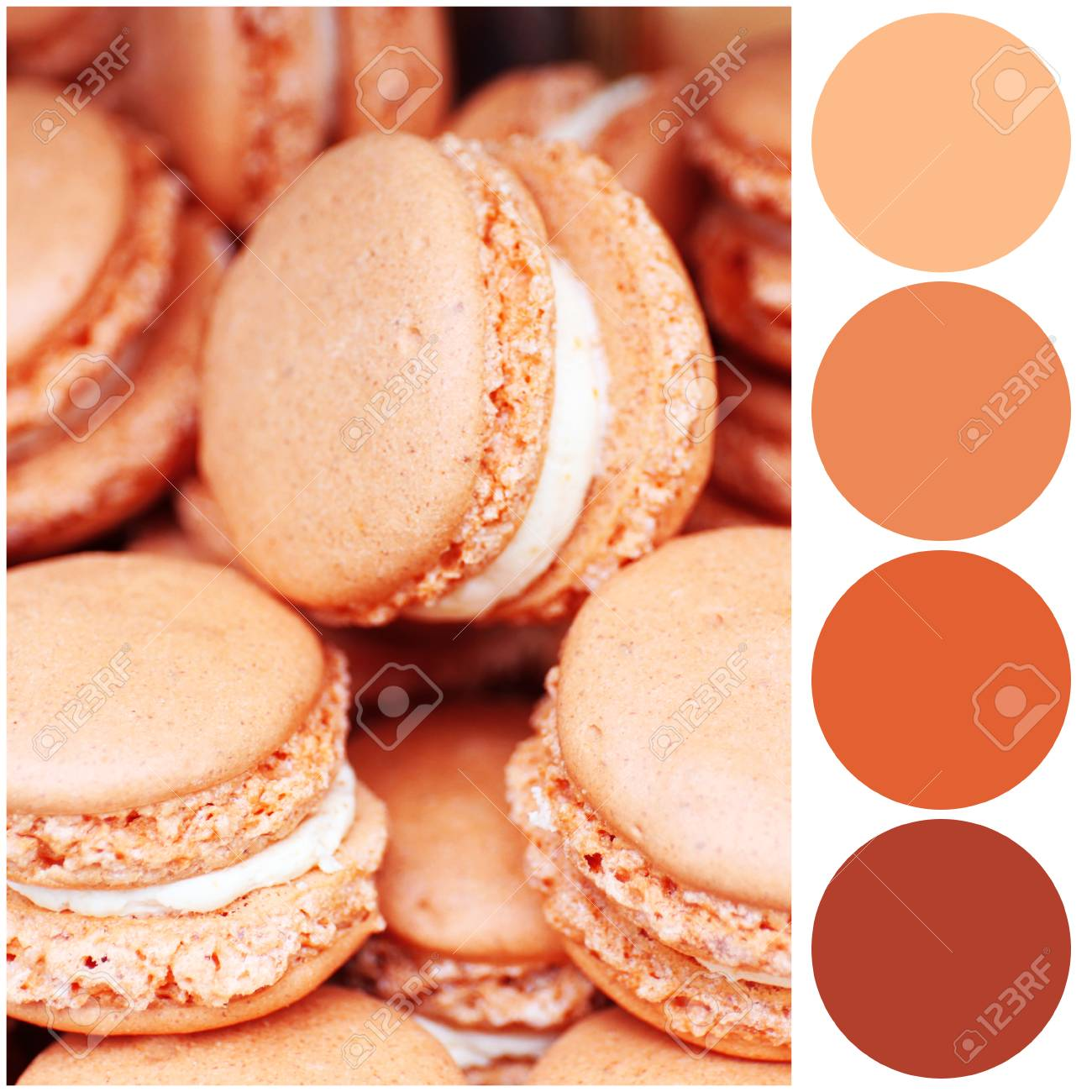 Apricot color matching palette  Tasty macarons, closeup
