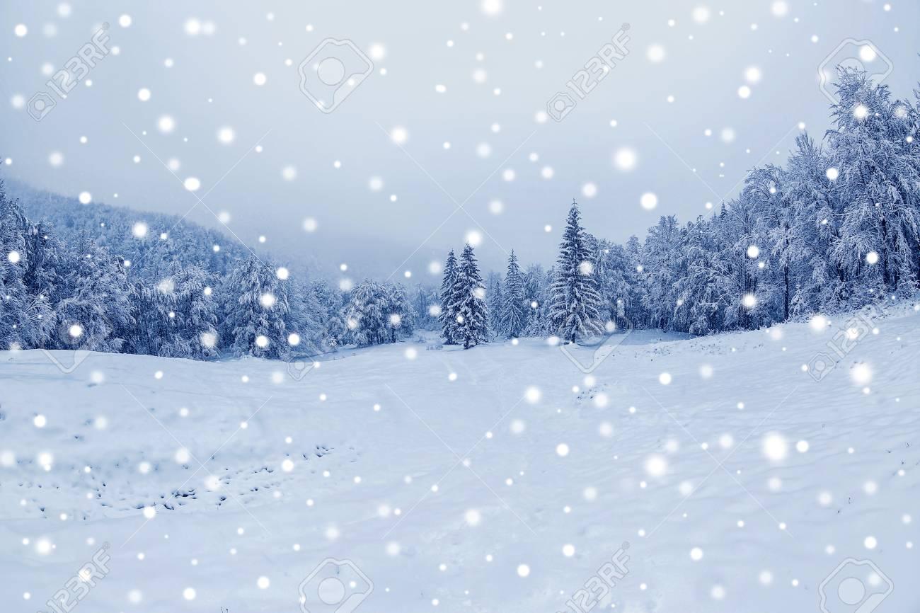 Beautiful View Of Winter Landscape Christmas And New Year 2018 Fotografiya Kartinki Izobrazheniya I Stok Fotografiya Bez Royalti Image 92105826