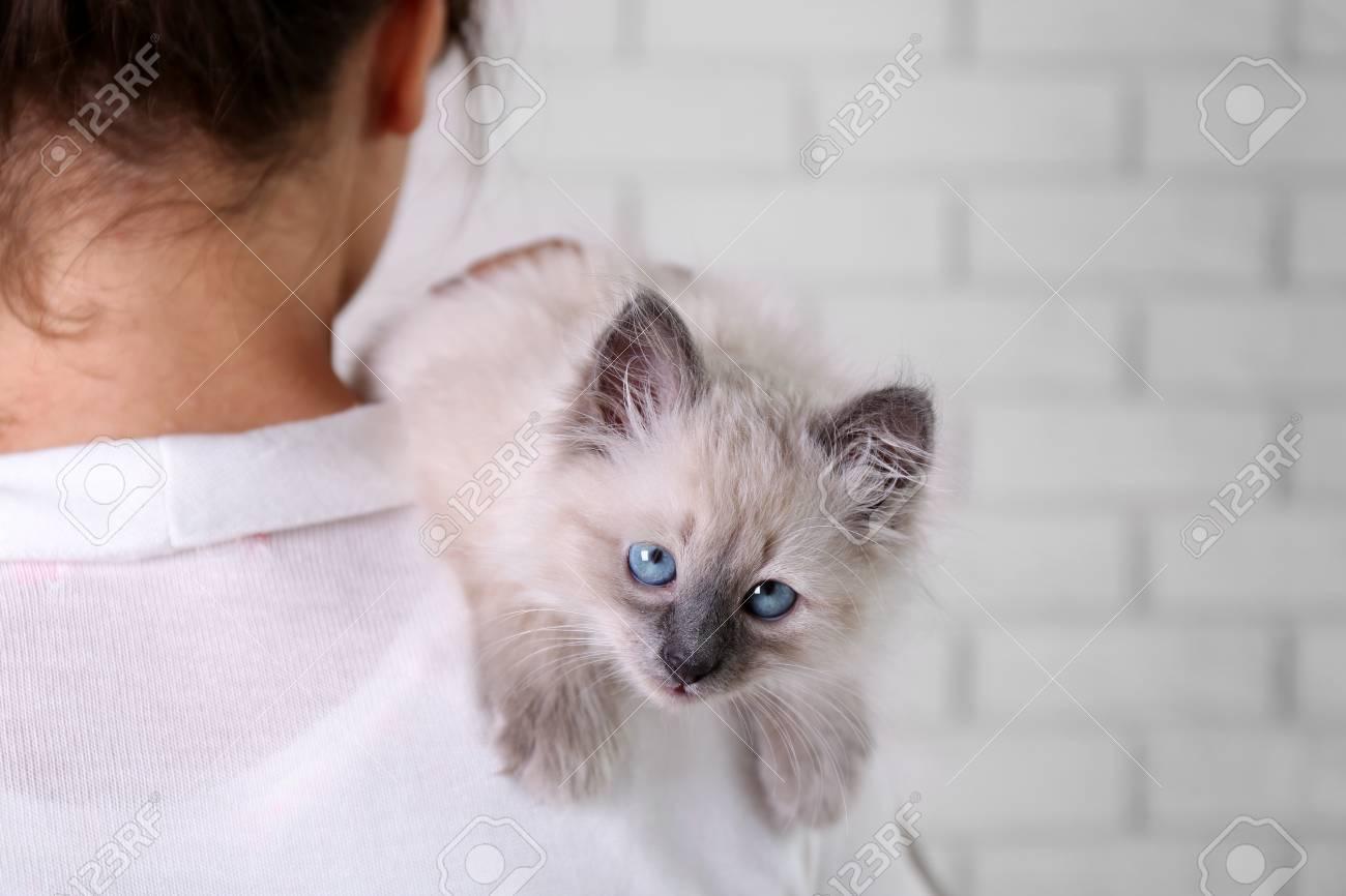 Što biste radili s osobom iznad, prikaži slikom - Page 22 92852869-young-woman-holding-cat-on-light-wall-background
