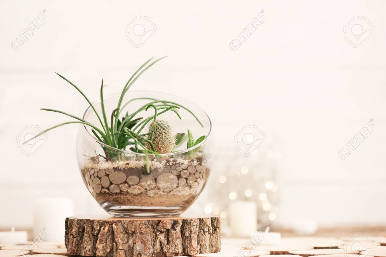 Mini Succulent Garden In Glass Terrarium On Wooden Stand Stock Photo