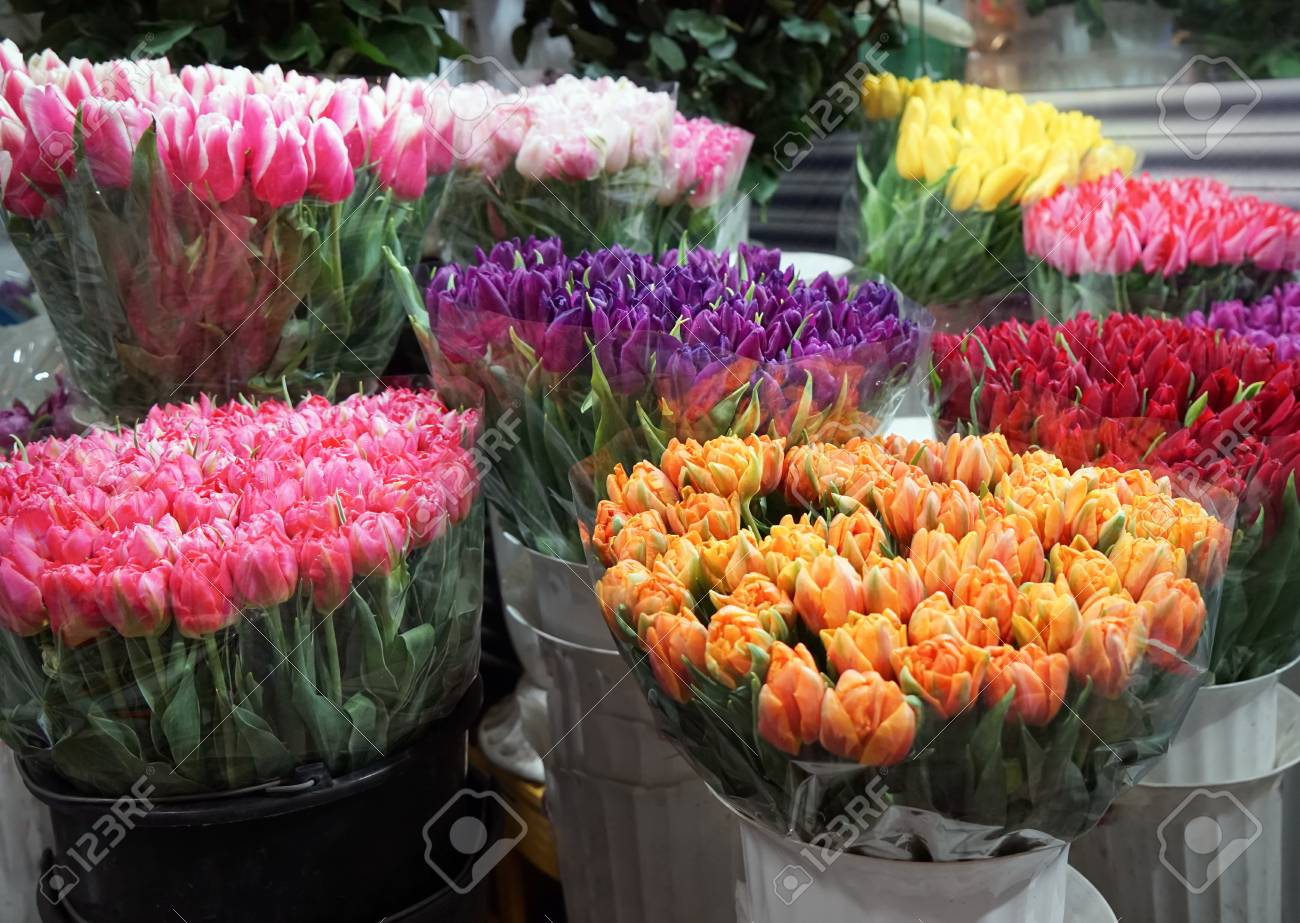 Assortment of beautiful flowers at floral shop stock photo picture assortment of beautiful flowers at floral shop stock photo 97865100 izmirmasajfo