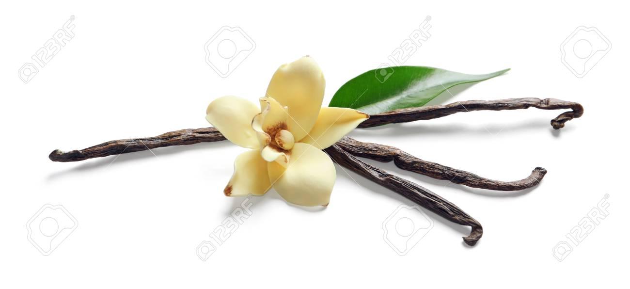 Vanilla sticks and flower on white background - 99539440