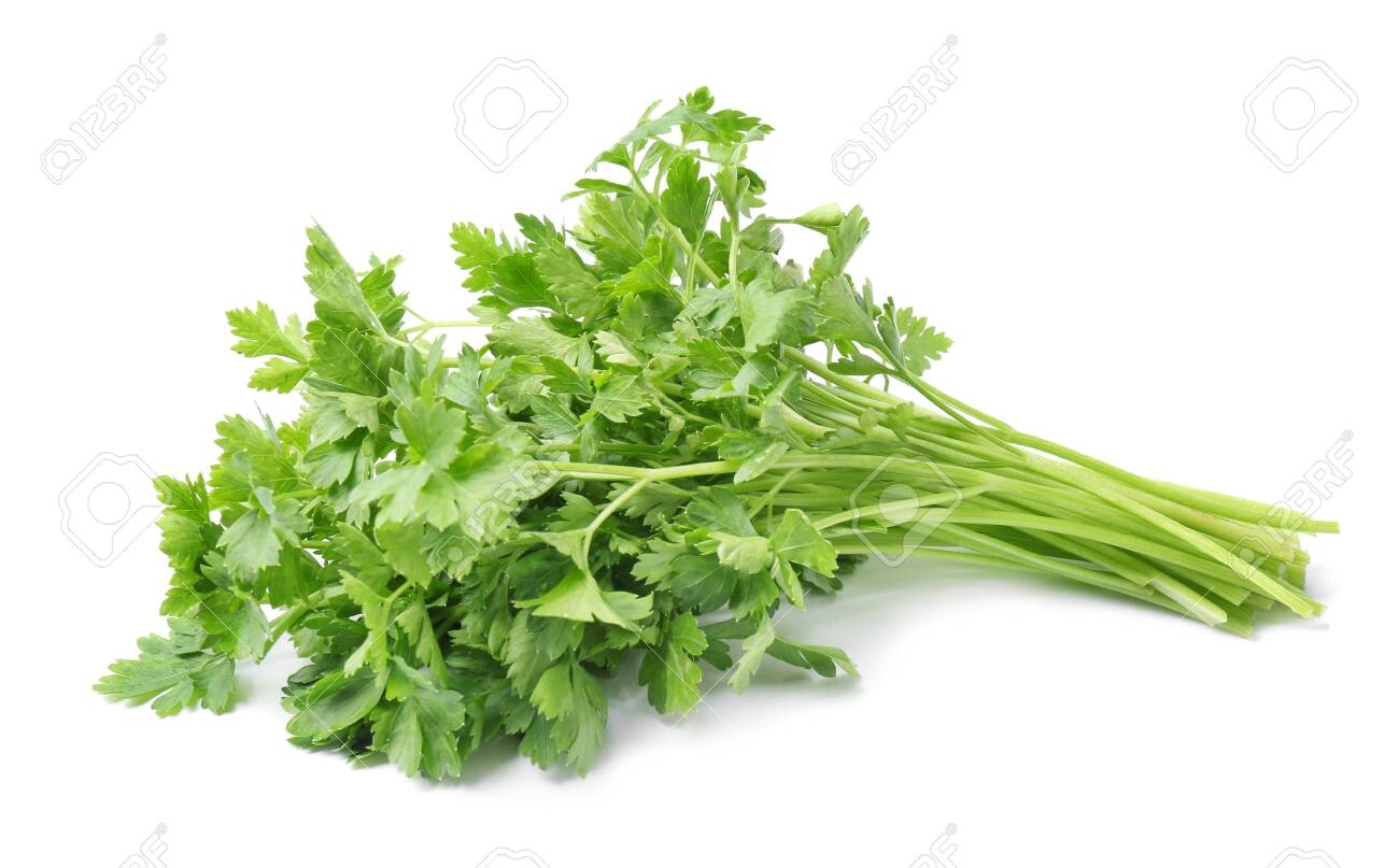 Fresh green organic parsley on white background - 125266167