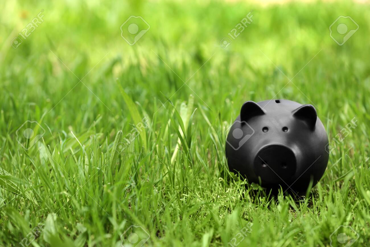 Black piggy bank in green grass outdoors. Space for text - 128128793