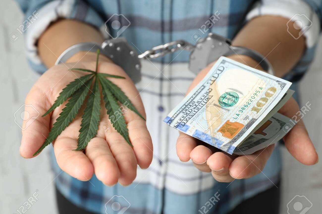 Woman in handcuffs holding hemp leaf and dollars, closeup - 130395371