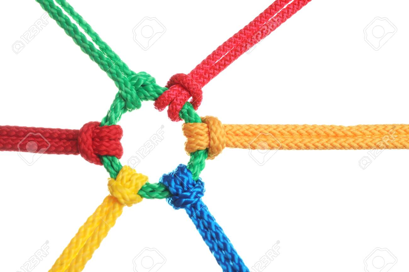 Colorful ropes tied together isolated on white. Unity concept - 137669670