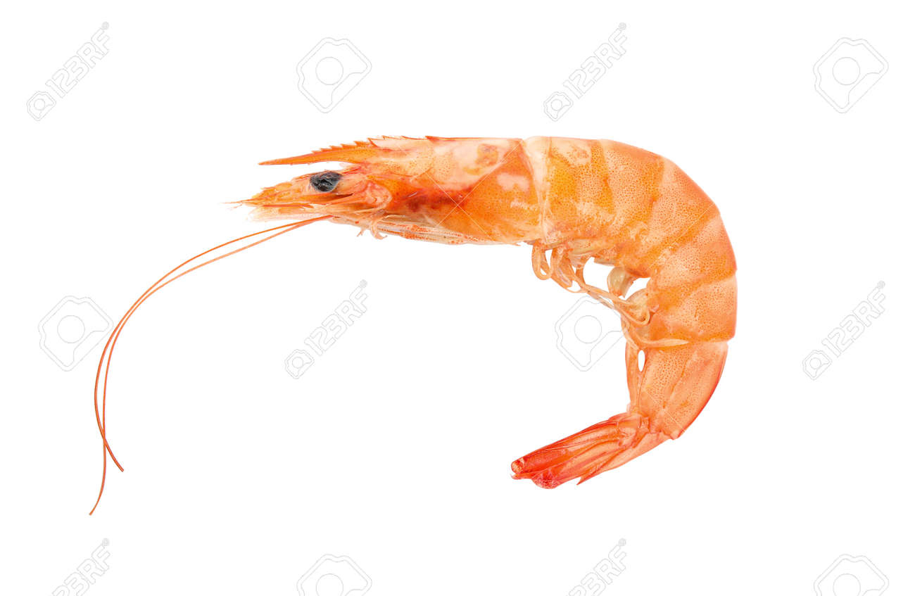 Delicious cooked whole shrimp isolated on white - 137769622