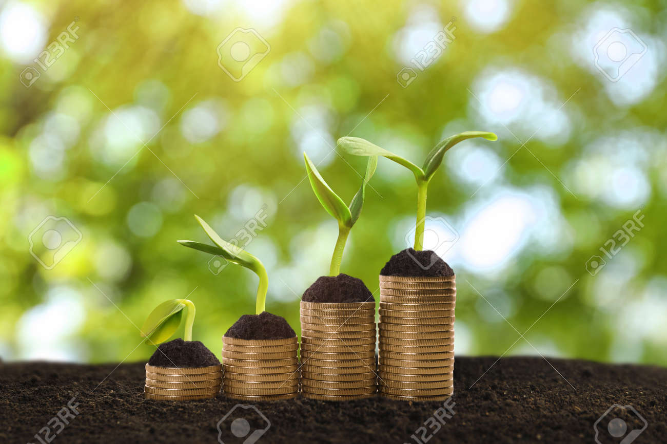 Stacked coins and green seedlings on ground outdoors, bokeh effect. Investment concept - 167640470