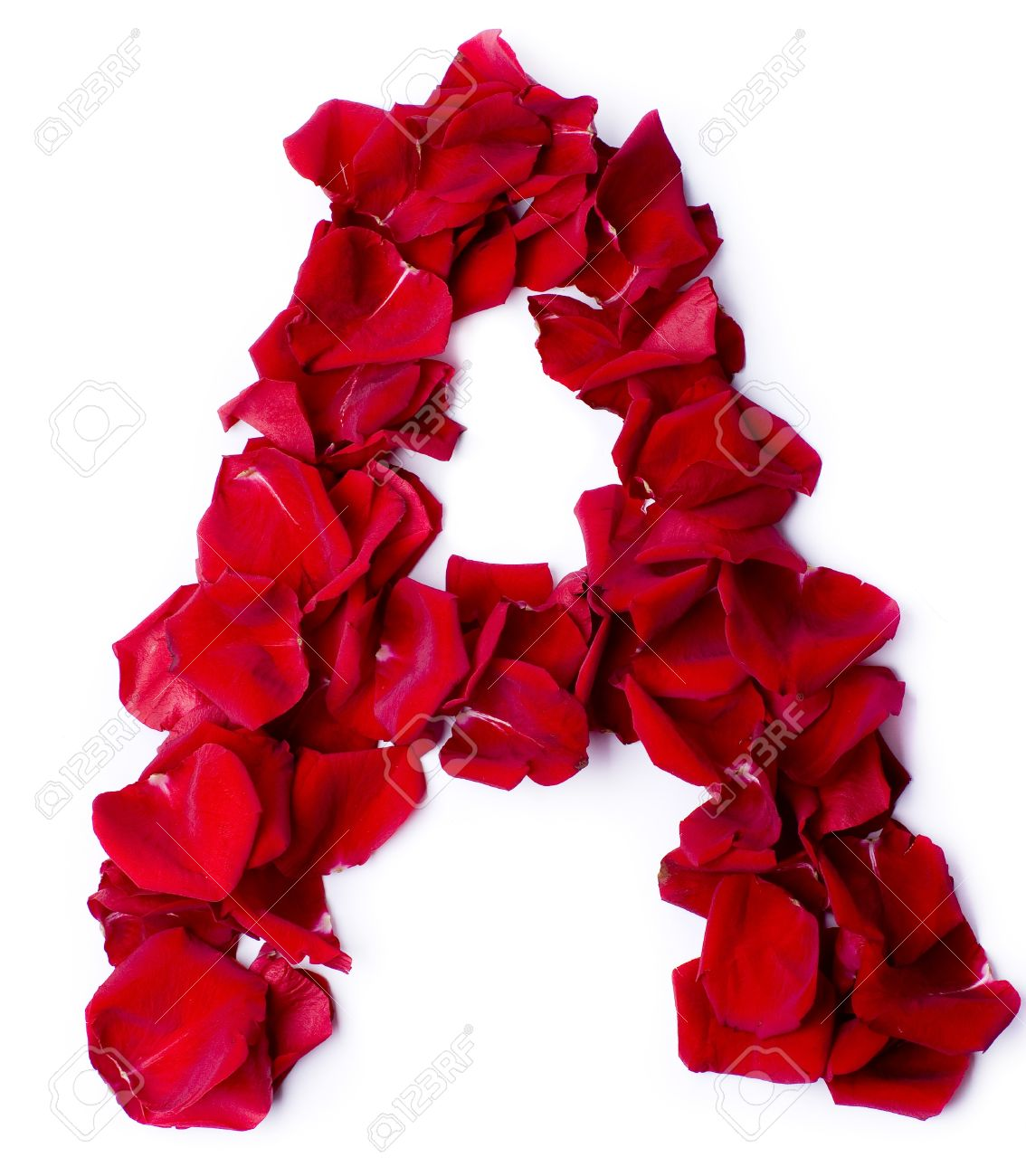 alphabet a made from red petals rose stock photo picture and