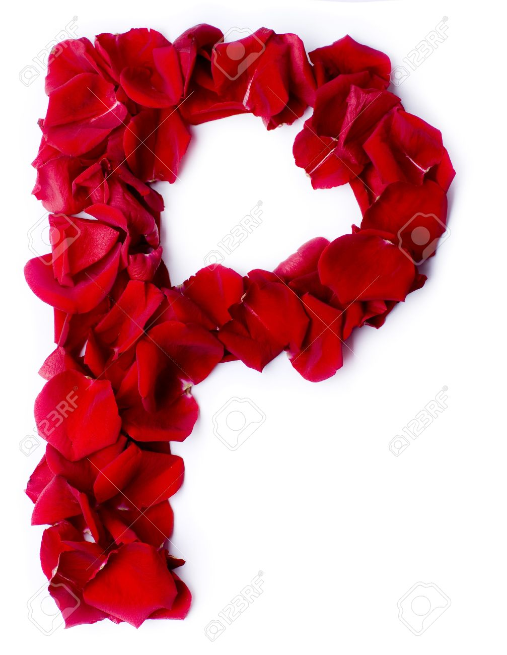 Alphabet P Made From Red Petals Rose Stock Photo