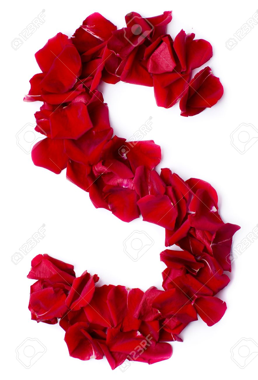 Alphabet S Made From Red Petals Rose Stock Photo