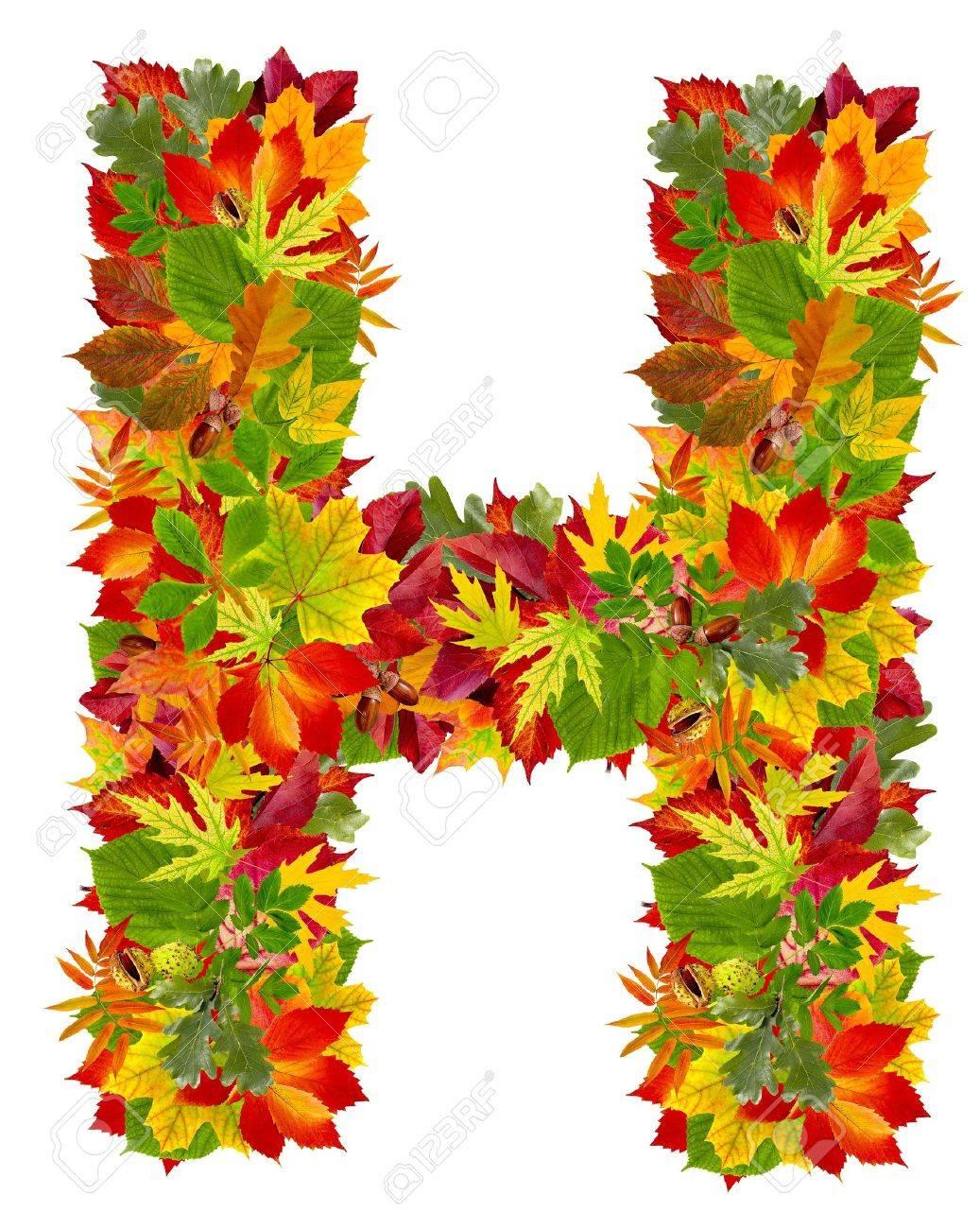 Afbeeldingsresultaat voor h herfst