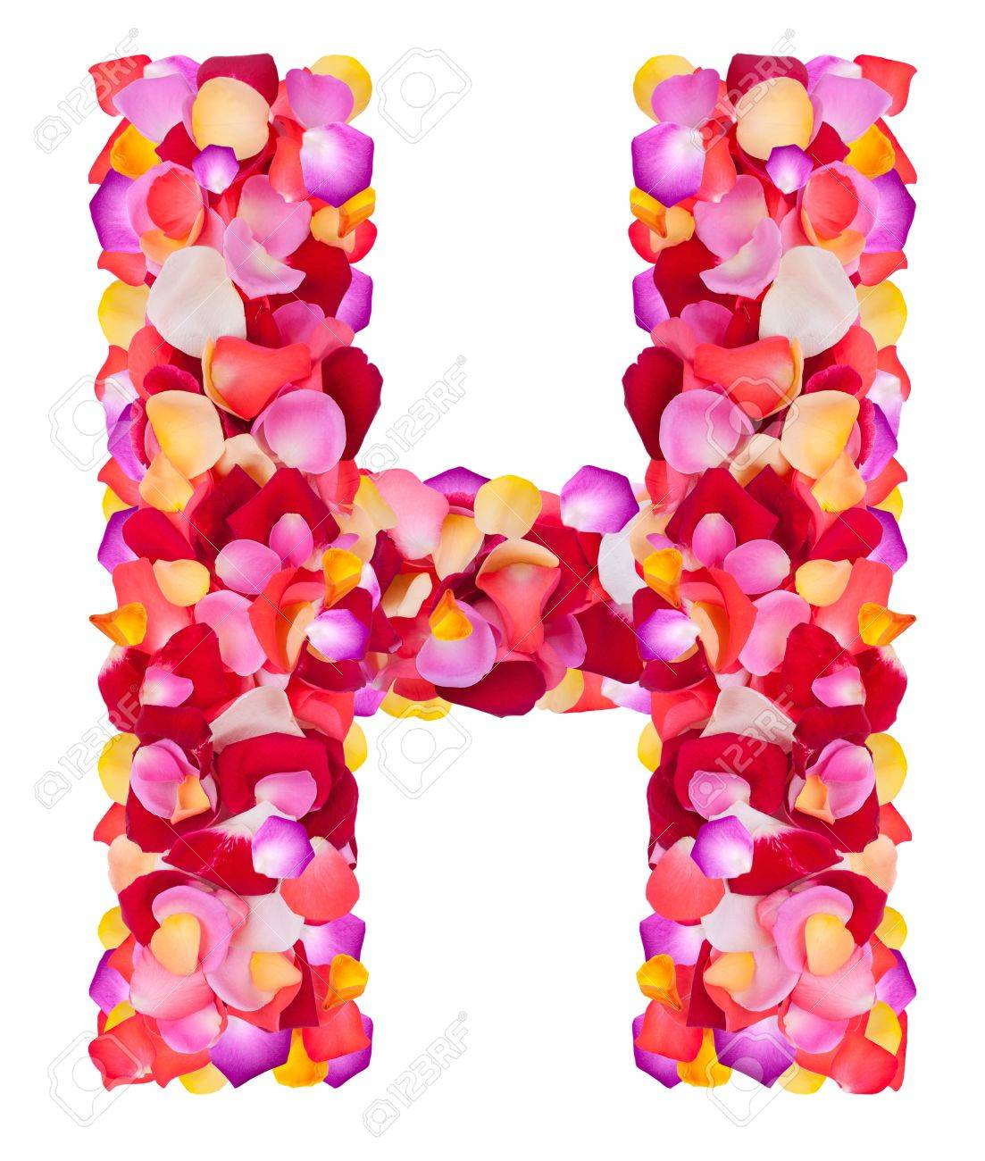 H Letter In Rose Letter H made from colorful