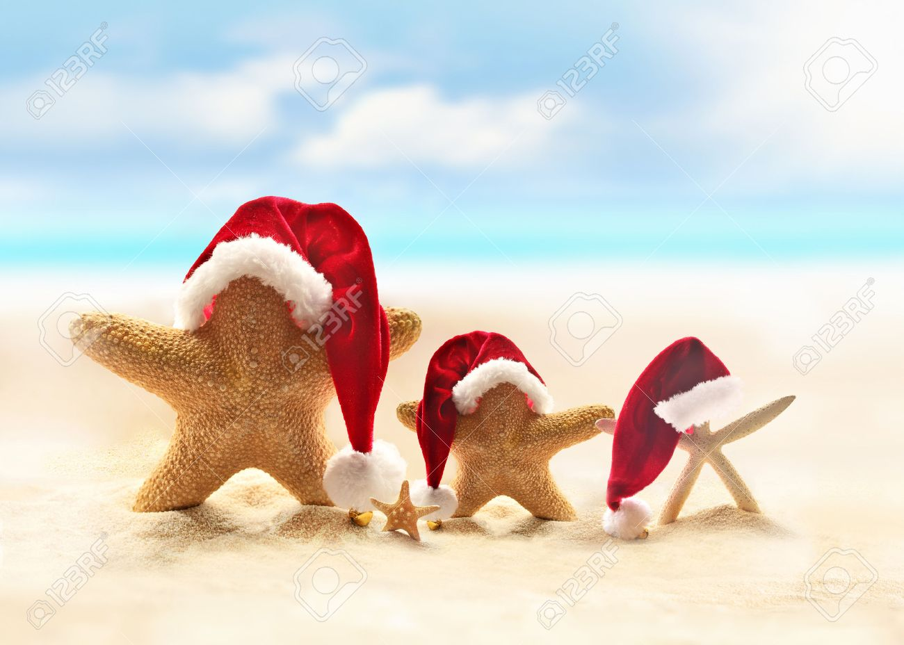 starfish on summer beach and santa hat merry christmas - Merry Christmas Beach Images