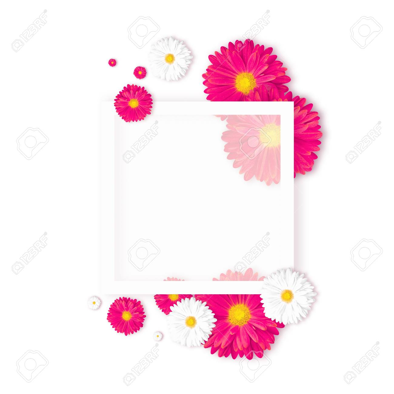 White Background With Beautiful Colorful Flower Wallpaper Flyers Stock Photo Picture And Royalty Free Image Image