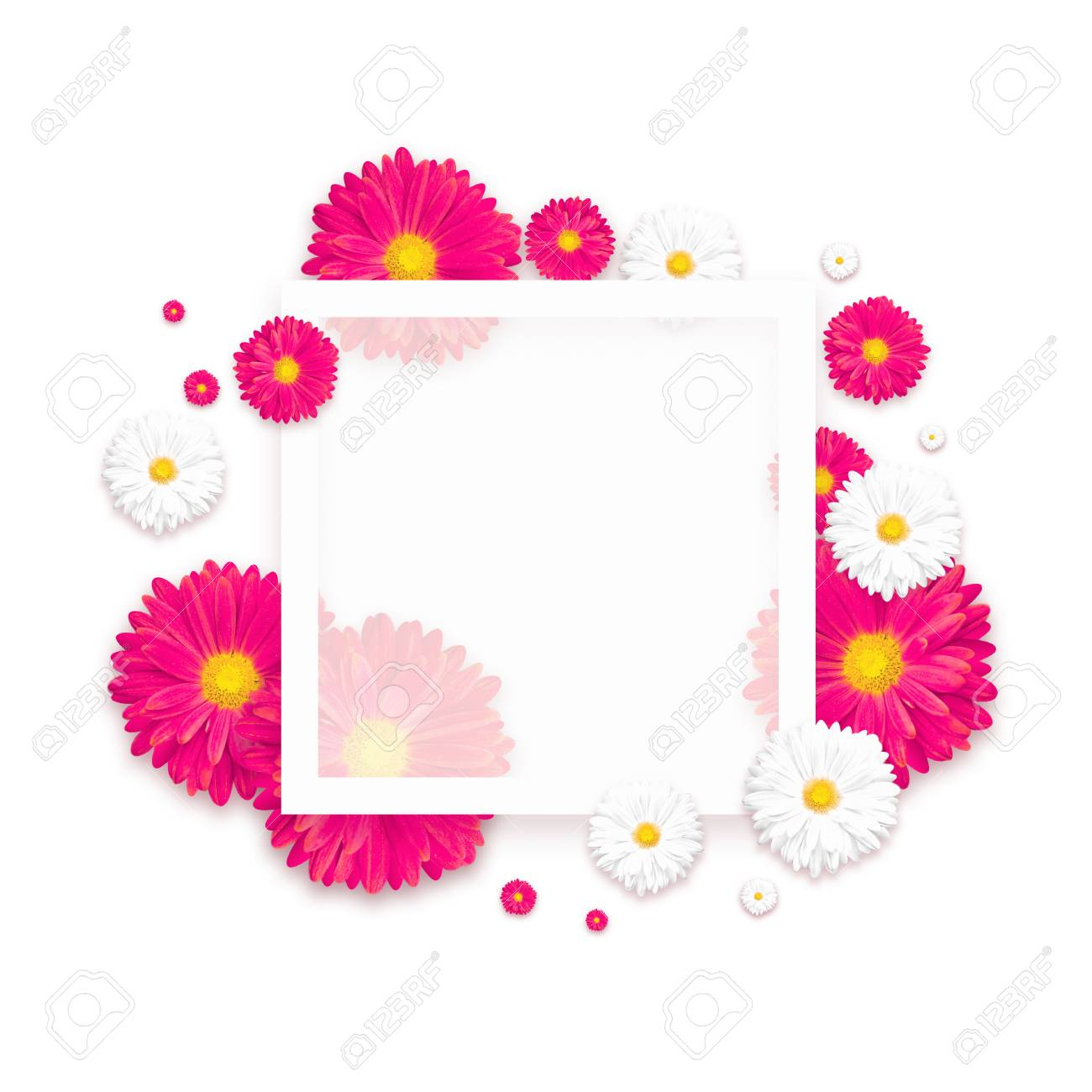 White Background With Beautiful Colorful Flower Wallpaper Flyers