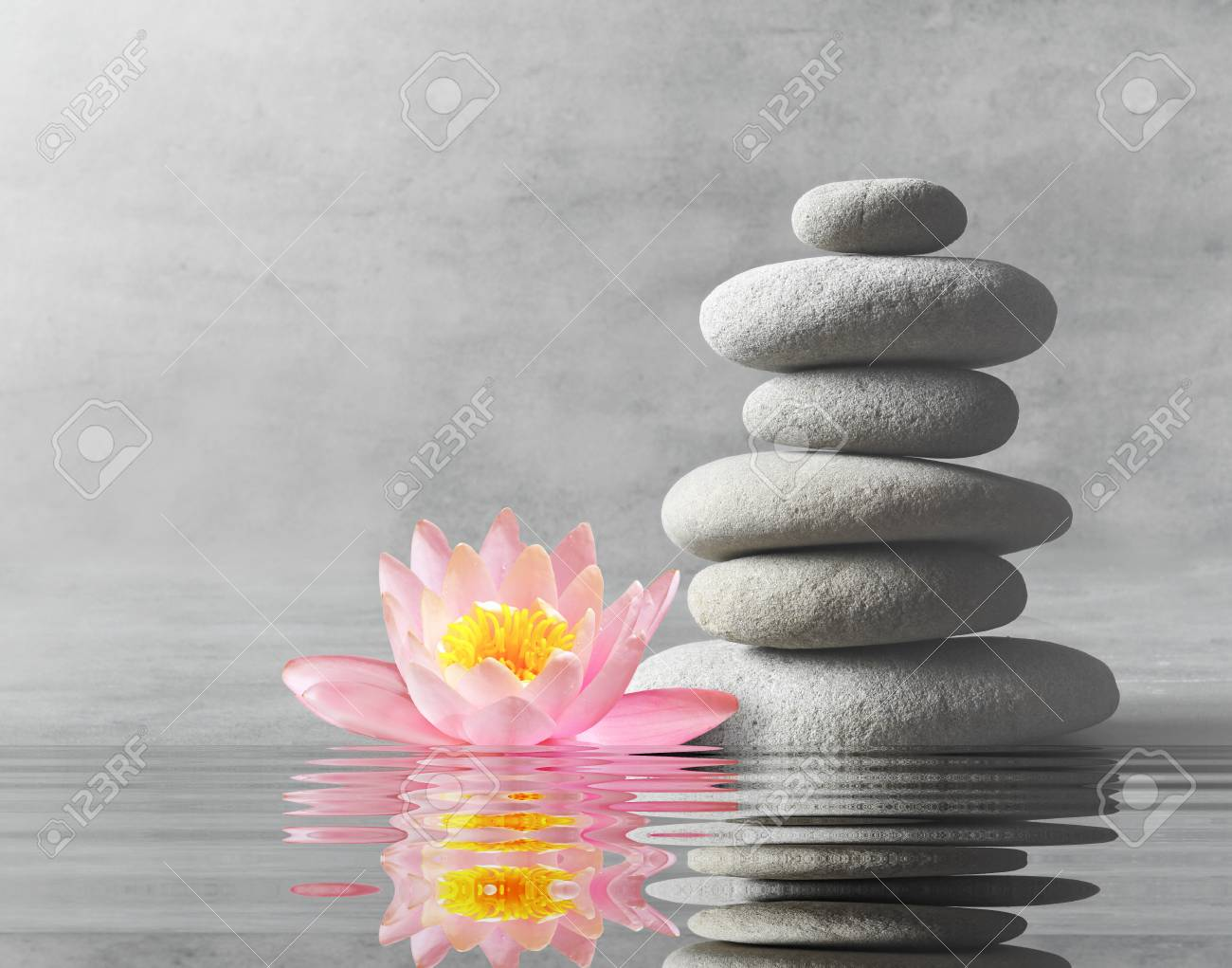 Stones and pink flower lotus balance zen and spa concept stock stock photo stones and pink flower lotus balance zen and spa concept izmirmasajfo