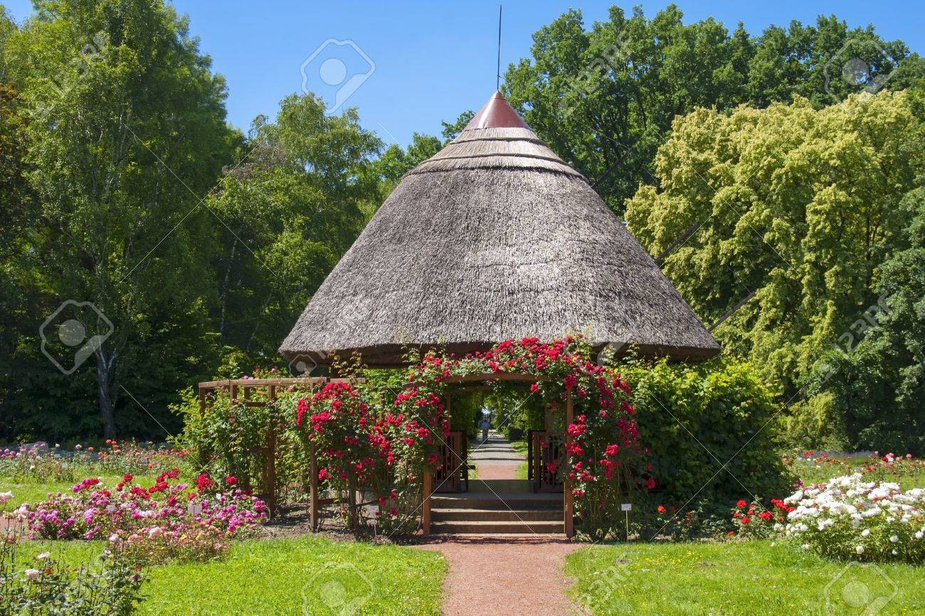 Nice Small Hut In A Rose Garden In The Botanical Garden Of Szeged Stock Photo    20619867