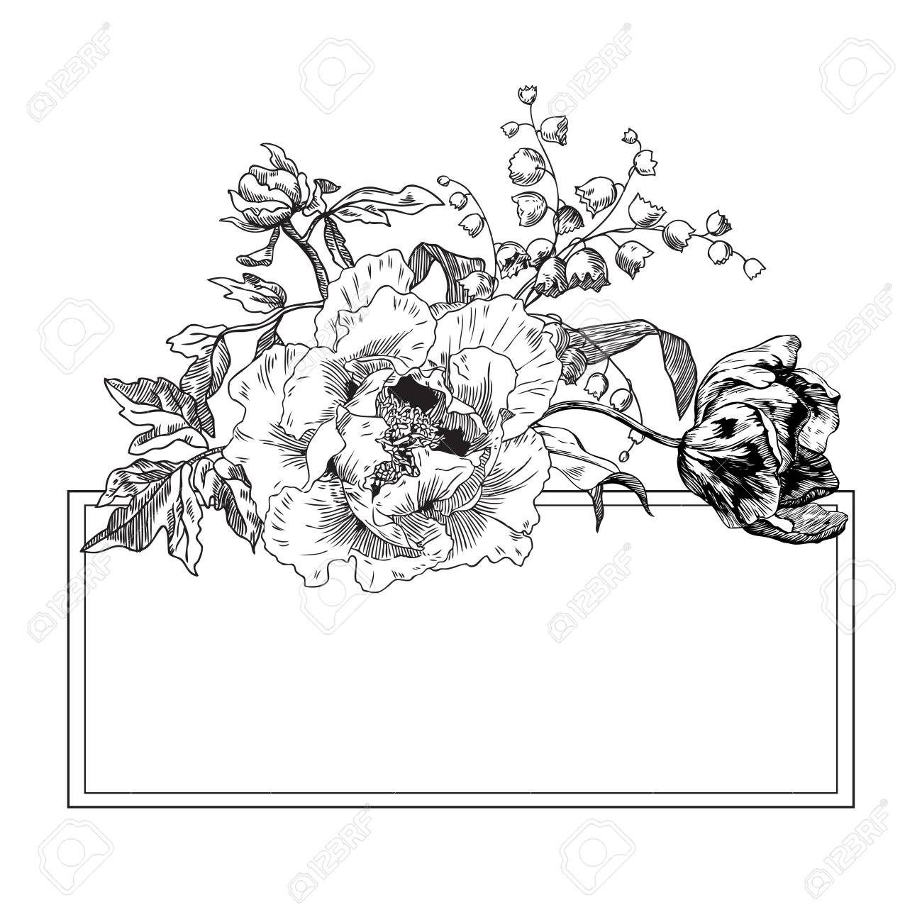 Peonies Roses Botanical Floral Hand Drawn Pen and Ink Illustration