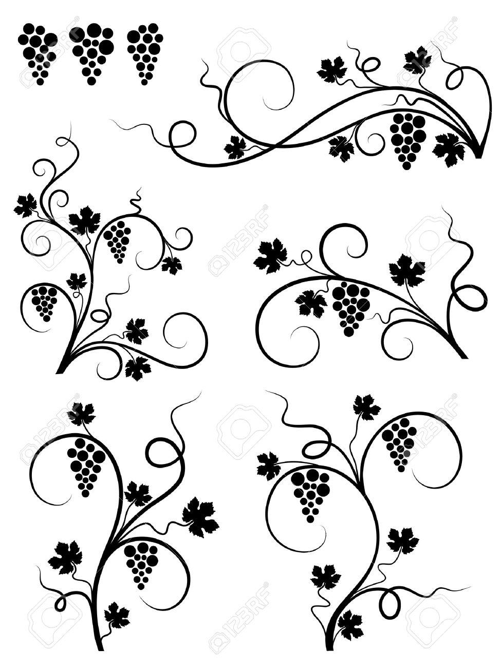 Grape design elements. Vector illustration. Stock Vector - 8596283