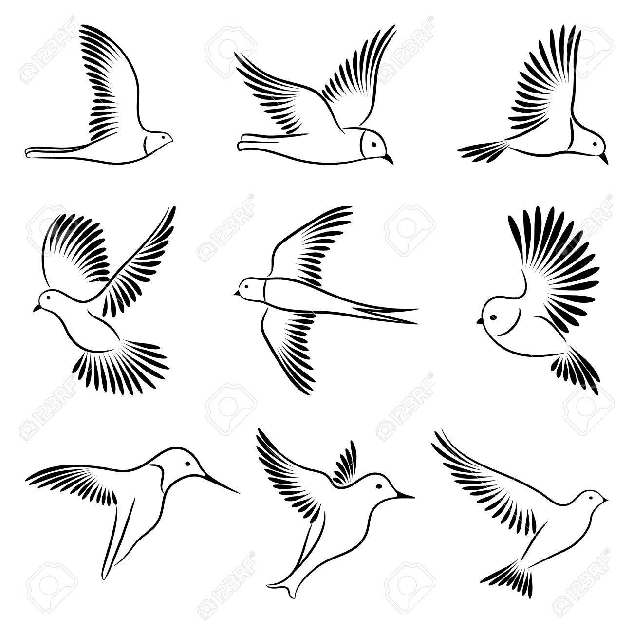 Birds Stock Vector - 8819073