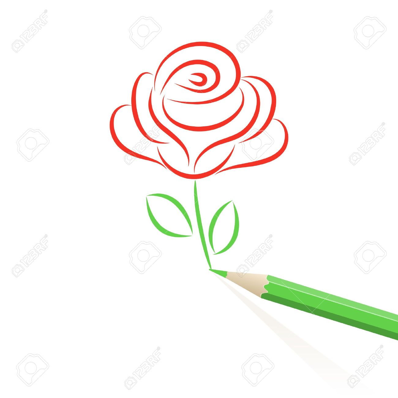 Rose Drawing Images Stock Pictures Royalty Free Rose Drawing