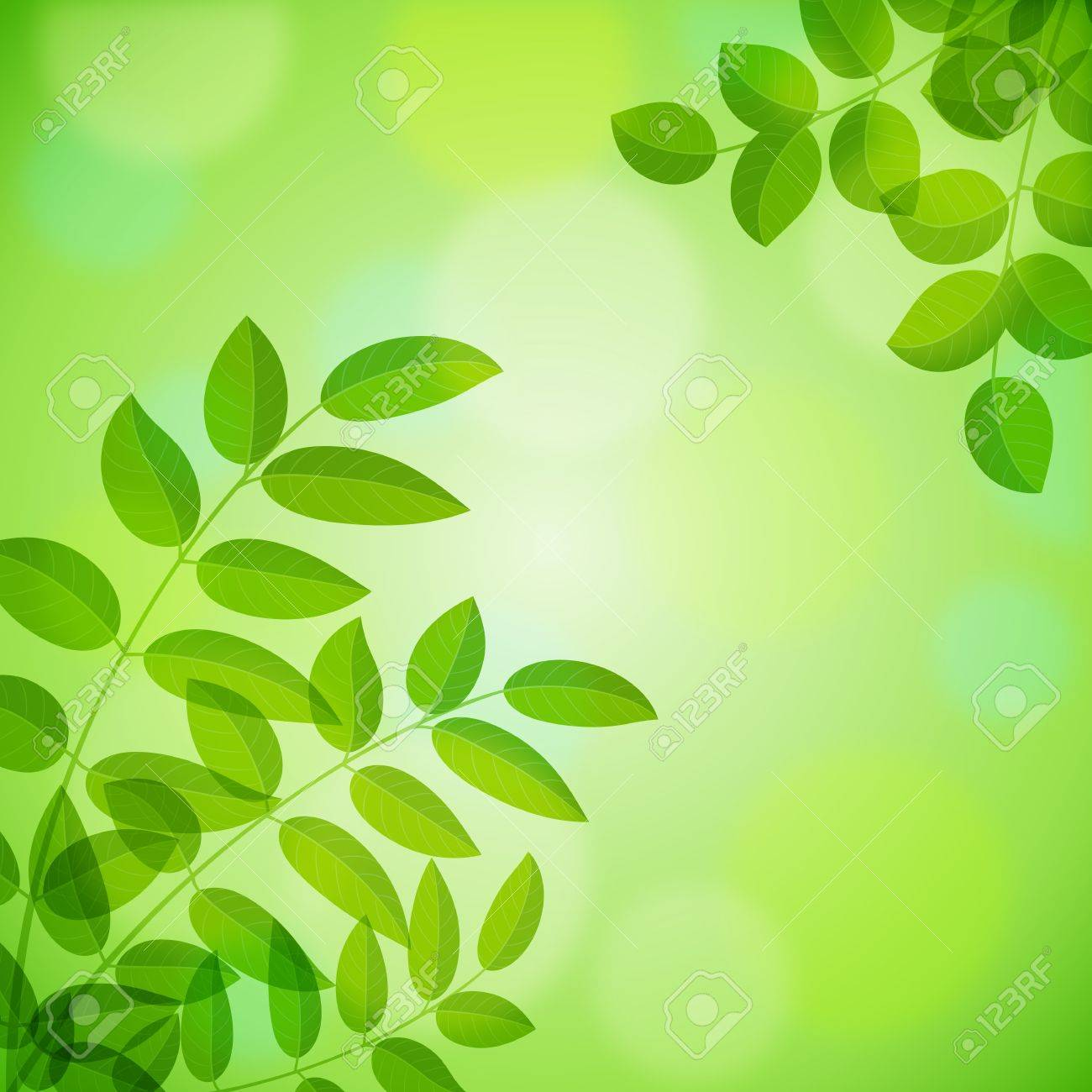 Summer Background with foliage. Vector illustration. Stock Vector - 17738842