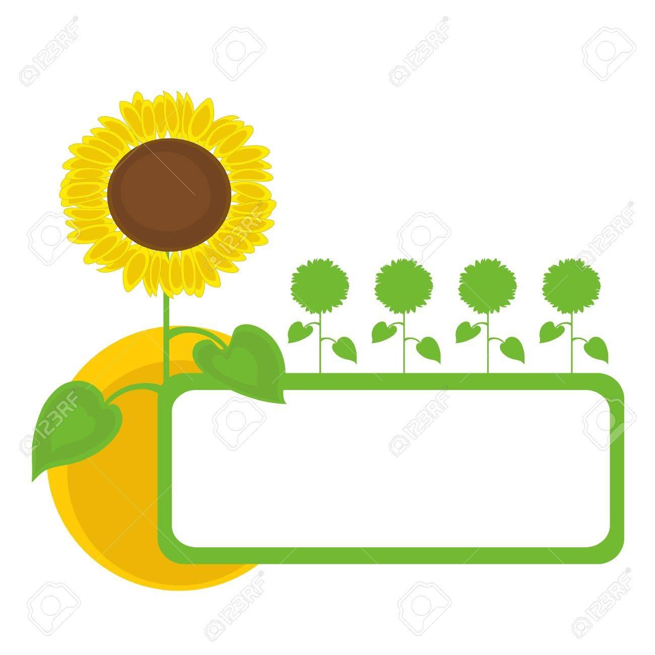 太陽とひまわりフレーム デザイン。ベクトル イラスト。 ロイヤリティ