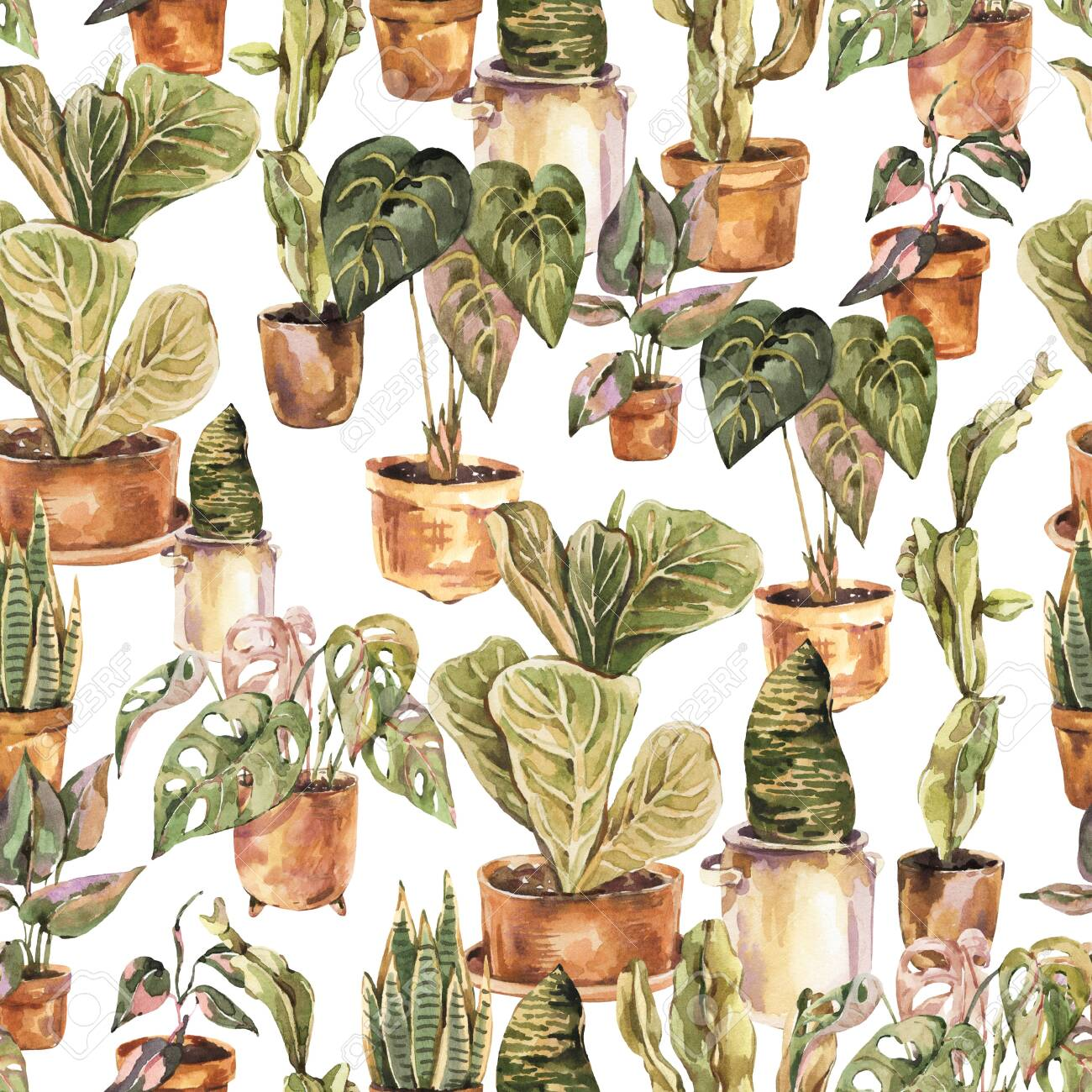 Watercolor Indoor Plants Seamless Pattern Urban Jungle Natural Stock Photo Picture And Royalty Free Image Image 149305388