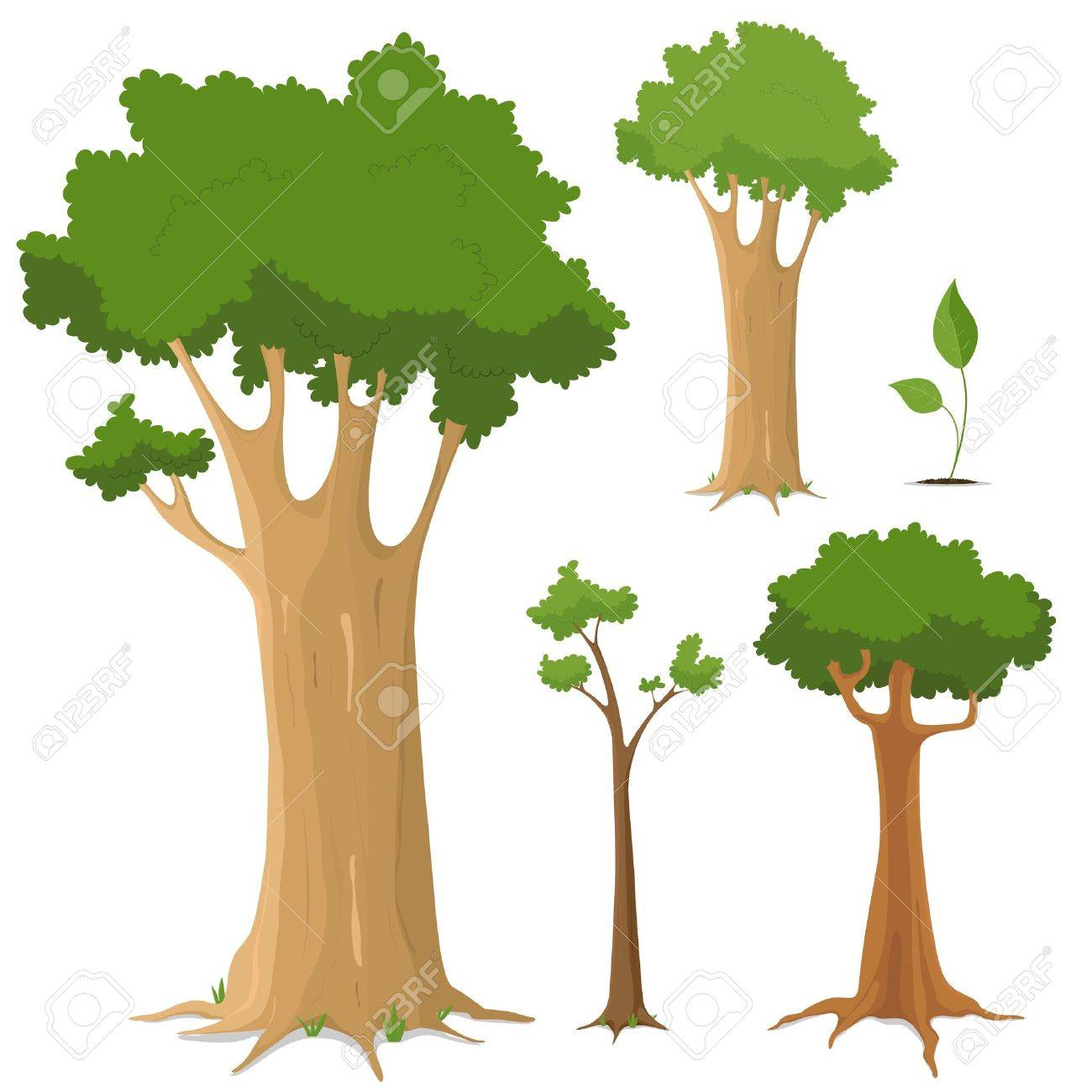 illustration of a set of variety of trees young and old royalty