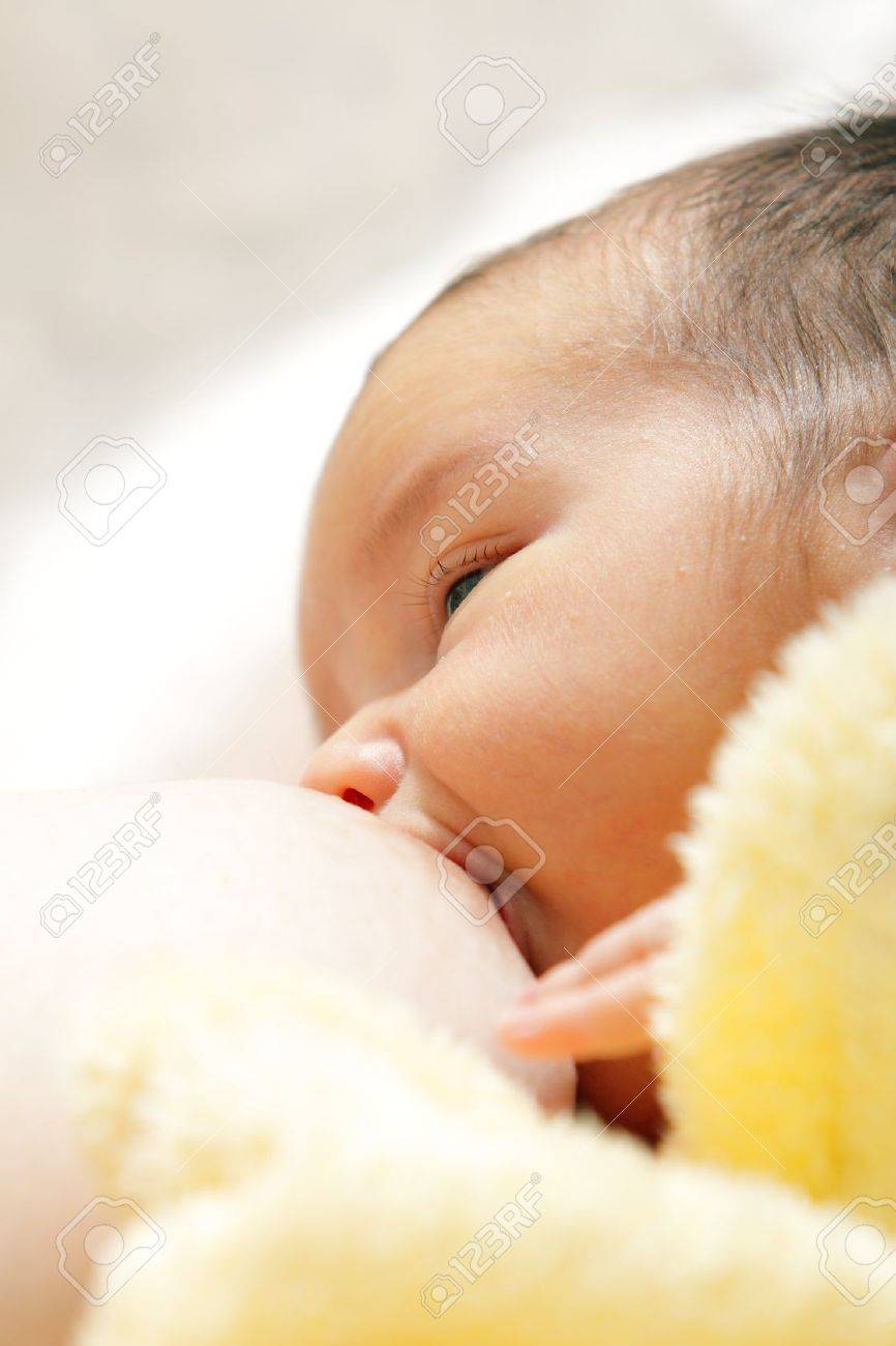 Newborn baby breast feeding breast Stock Photo - 10482656
