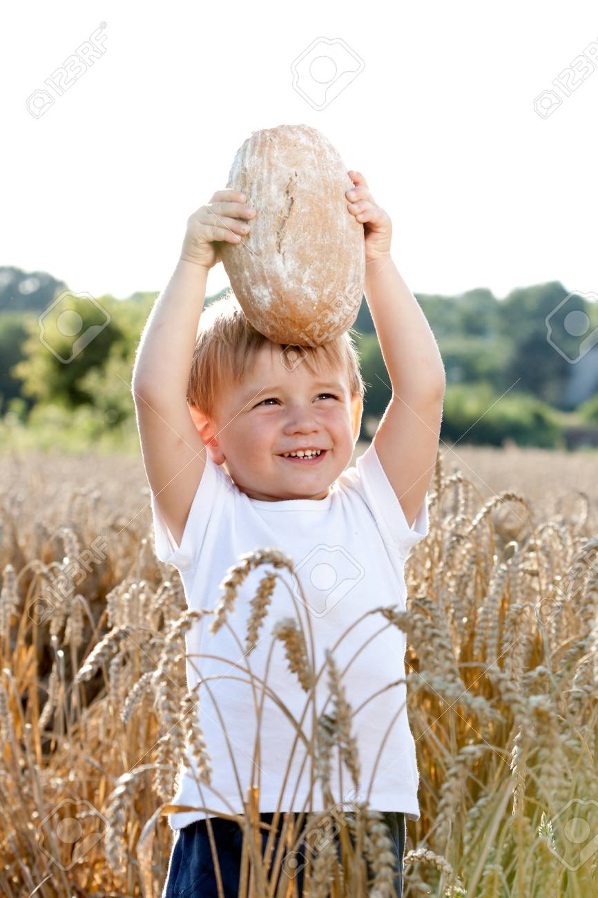 little boy with the bread over your head in the mature grain Stock Photo - 24856949