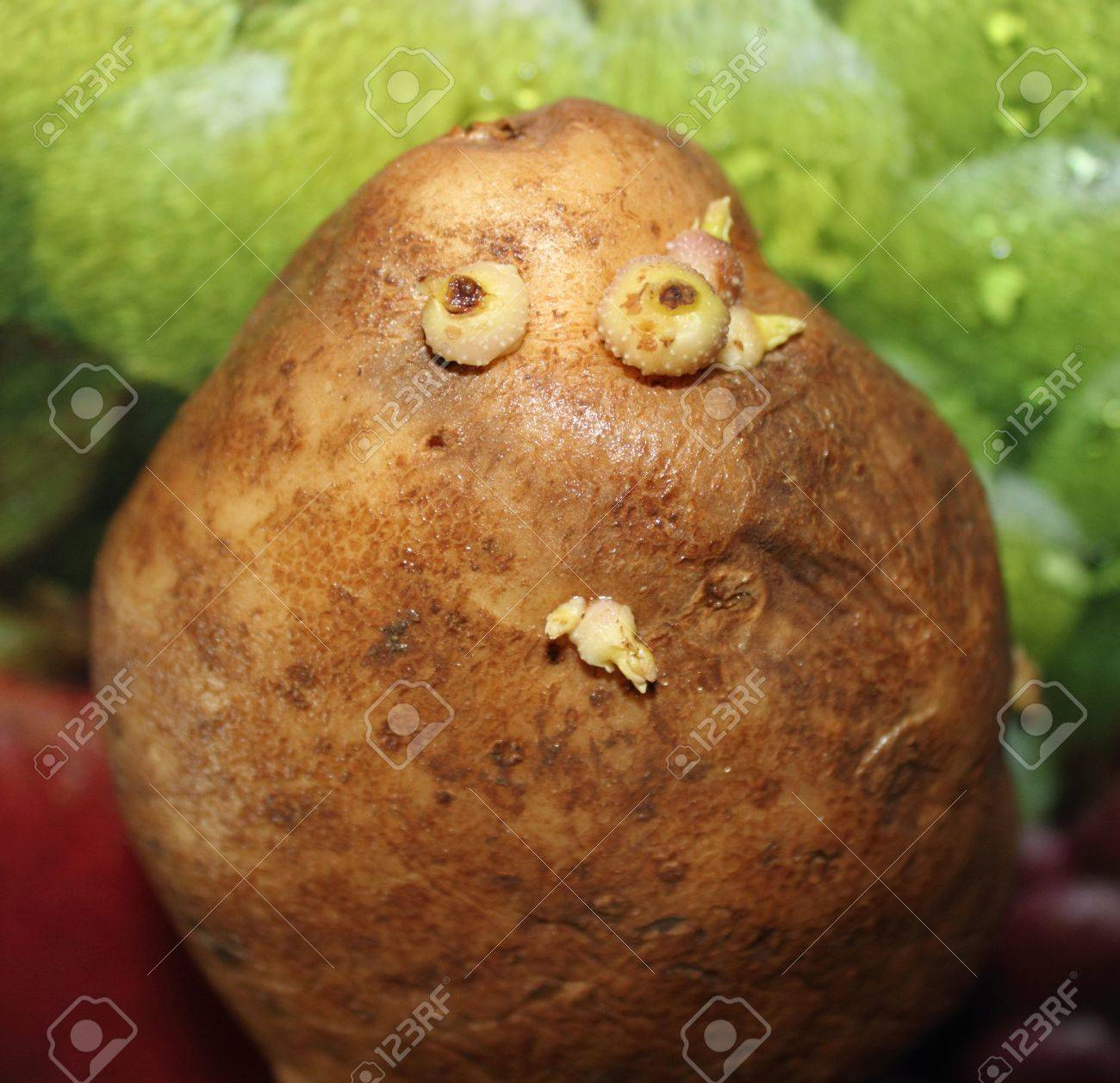 Potato With Eyes And A Mouth On A Bright Background Stock Photo