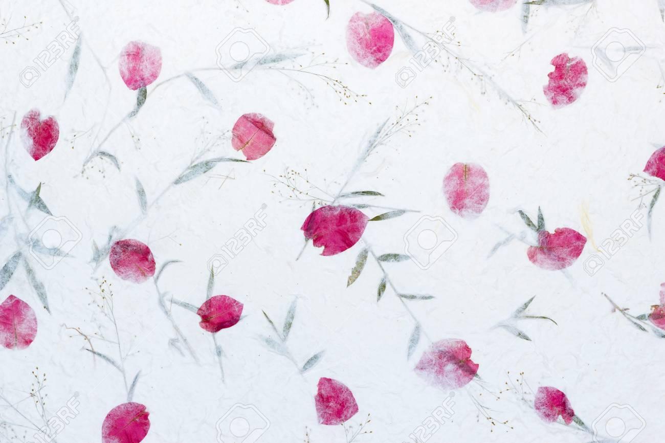 Weiss Sa Papier Mit Rosen Blutenblatter Und Bluten Von Gras