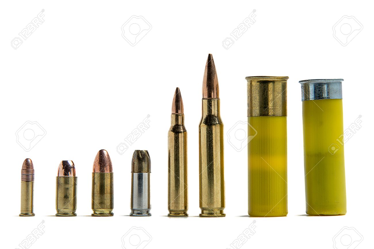 Several different shells lined up for size comparison:  22lr,