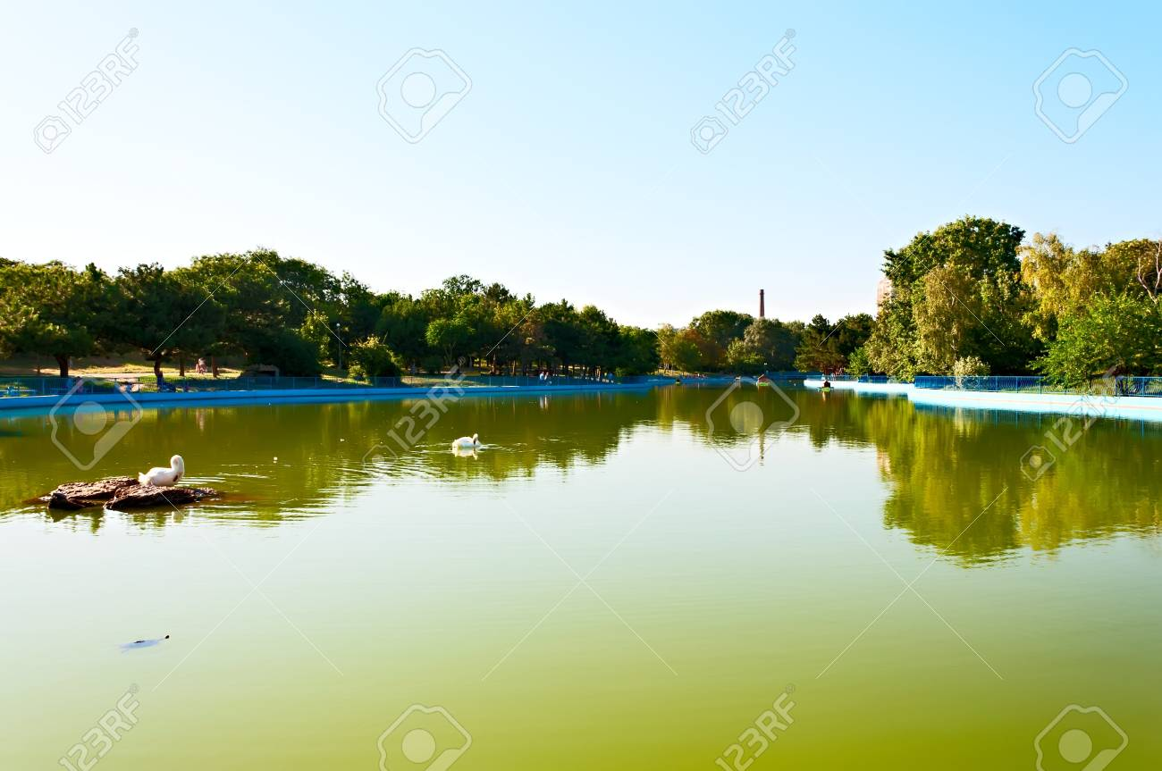 A pond in the arboretum Victory, Odessa  Ukraine Stock Photo - 14715915
