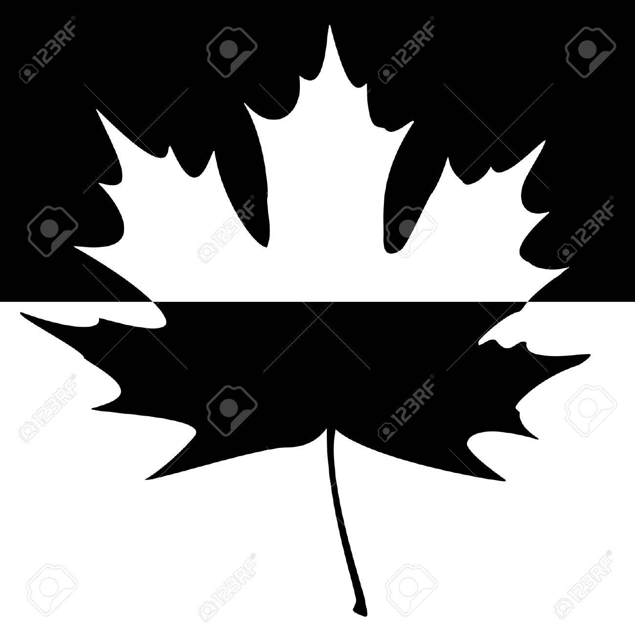 Half shaded carved maple leaf. EPS10 vector illustration. Stock Vector - 15256587