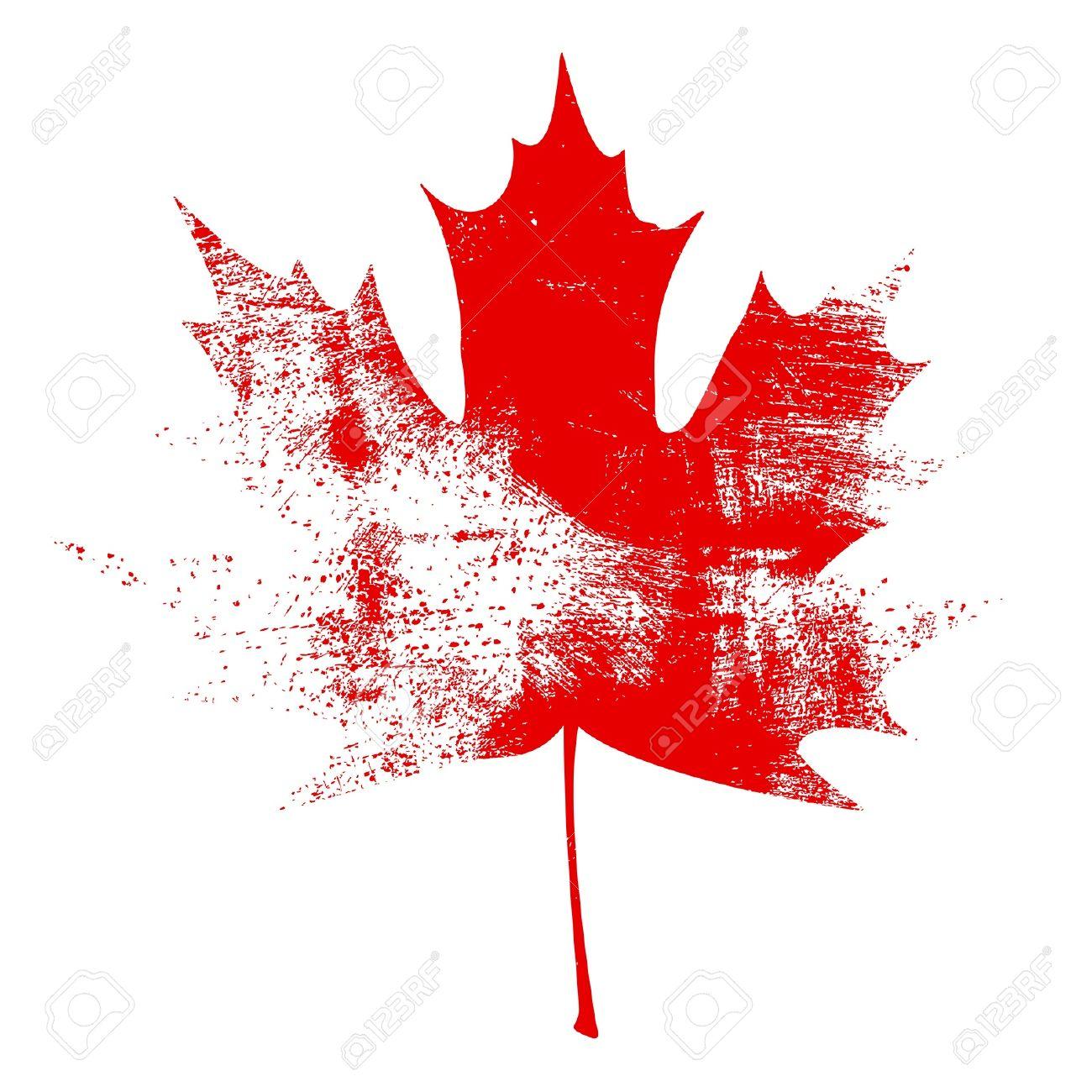 Red Grunge Maple Leaf Vector Illustration