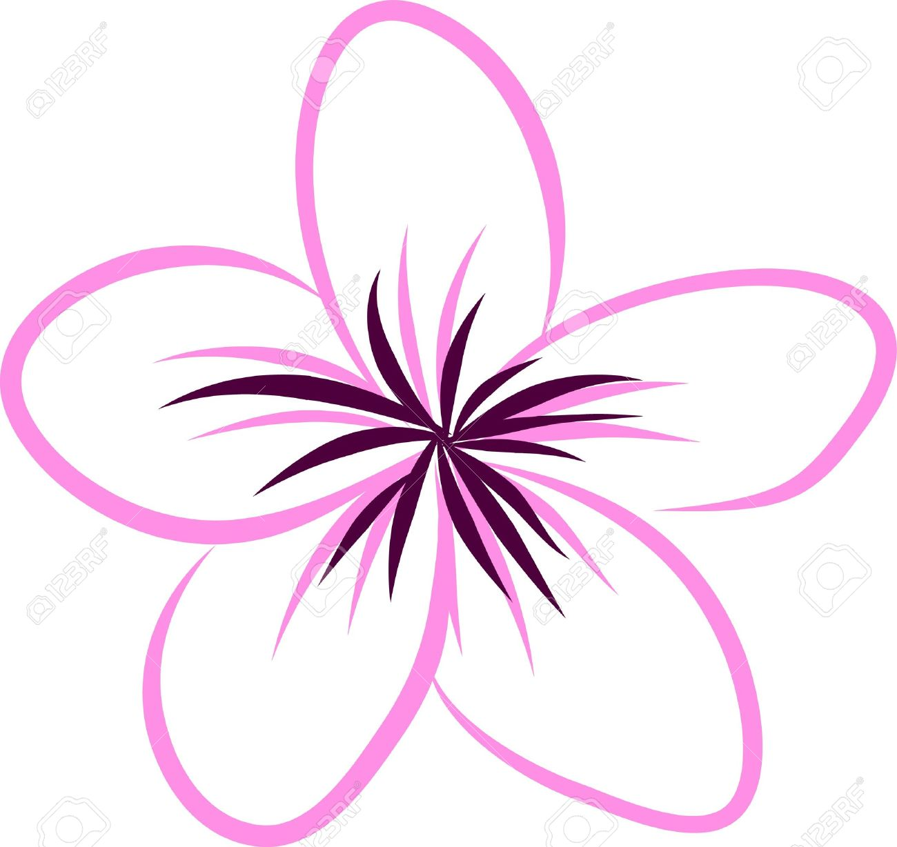 Drawing Tropical Plumeria Flowers Vector Royalty Free Cliparts Vectors And Stock Illustration Image 21424299