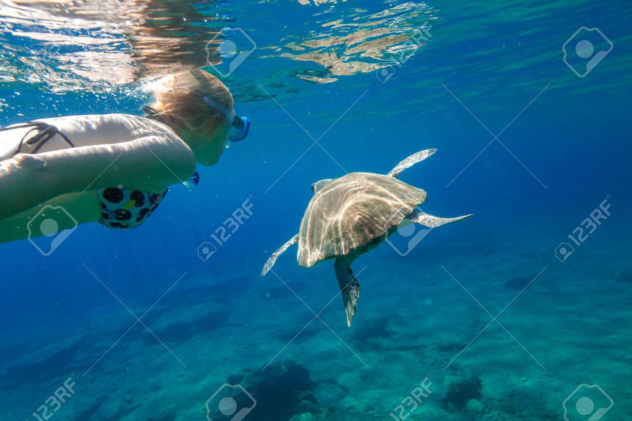 A young woman snorkeler swims with sea turtle Caretta in green and turquoise waters of the famous Foneas Beach, Kardamili in Mani peninsula, Peloponnese, Greece. Stock Photo - 45080484